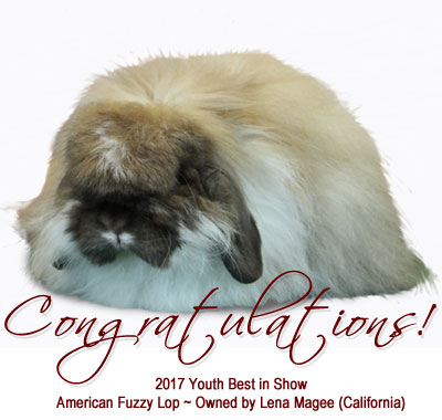 Congratulations to all Youth winners and the 2017 Youth Best in Show -Lena Magee - California