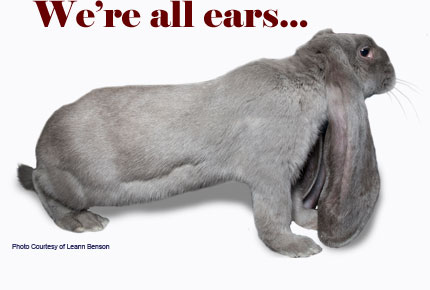 We're all Ears...Photo courtesy of Leann Benson