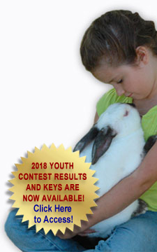 Young girl with Californian rabbit