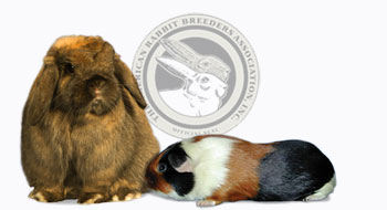 American Rabbit Breeders Association, Inc.